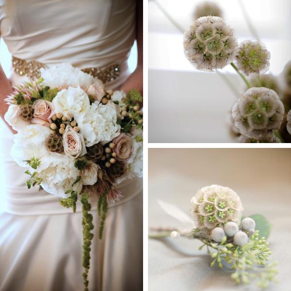 Bouquet insolito per sposa con scabiosa stellata
